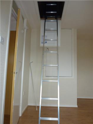 Aigburth Loft Ladder