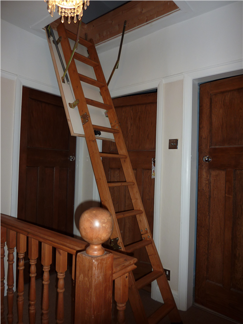 Crosby Loft Ladder